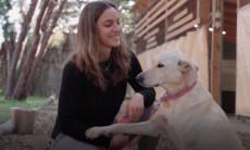 כלביית הדסה-נעורים מציגה: איך לדבר עם הכלב שלכם בקלות